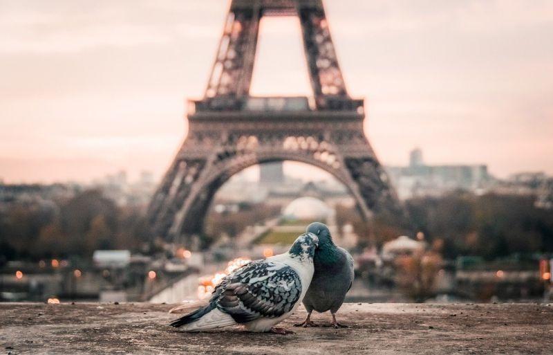 Comment réserver un hôtel pas cher à Paris ?